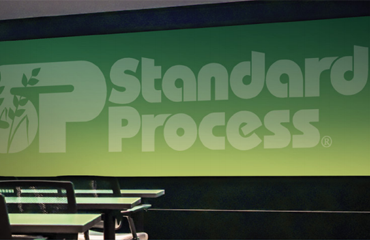 Standard-Process_Case-Study_Feature-Img