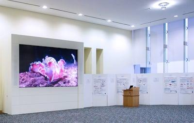 Qatar University, College of Business and Economics, Multipurpose Hall